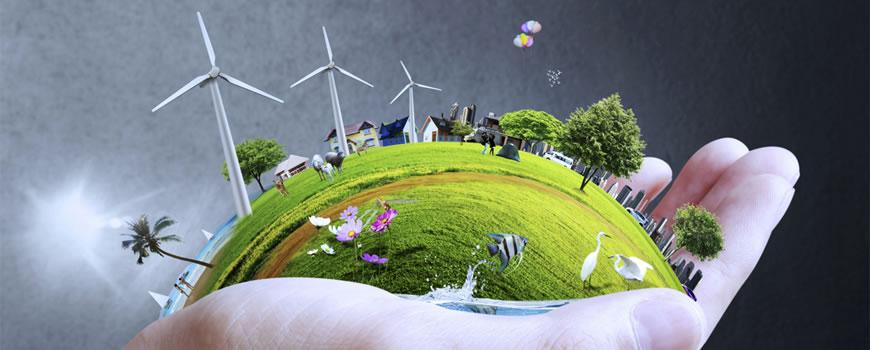 Consulenza gestione sistema ambientale